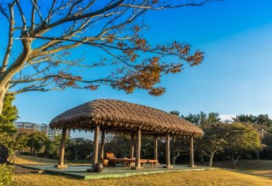 济州岛免签入境要求