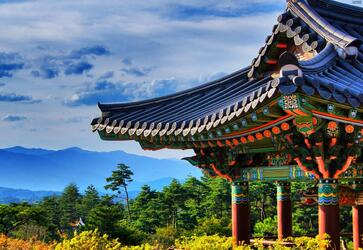 任先生韩国签证成功出签